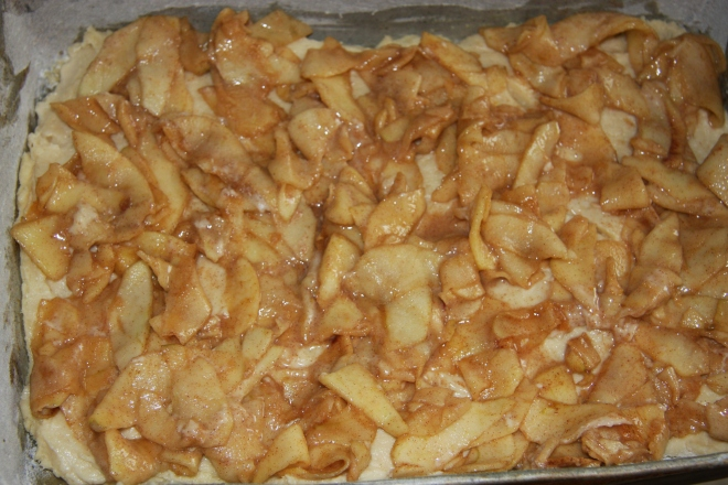 BABA'S APPLE CAKE 011