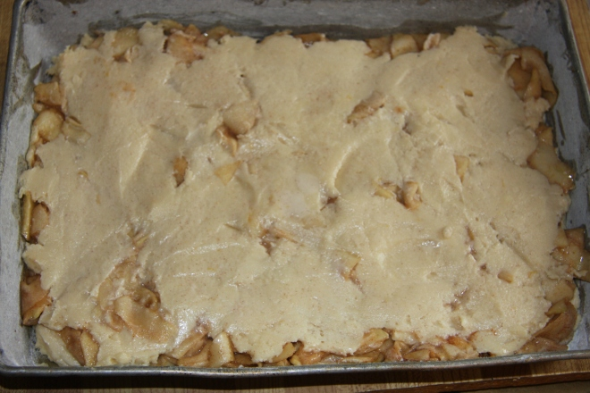 BABA'S APPLE CAKE 012