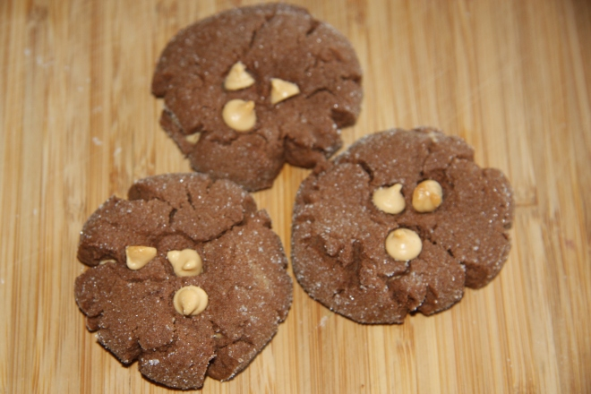 Chocolate Peanut Butter Cookies 008