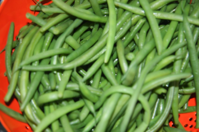 French Bean Salad 005