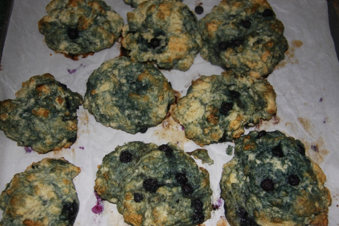 Blueberry Muffins and Purse 007